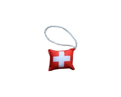 Kissen-mini Schweiz Nr. 3137