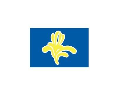 Brüssel (belgische Regionalflagge) Nr. 2665