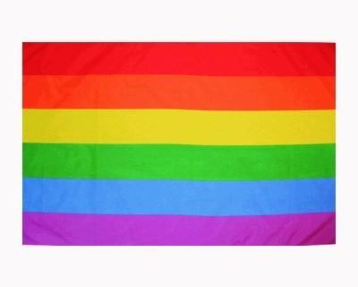 Raibow 90 x 150 cm Regenbogen Fahne Nr. 683