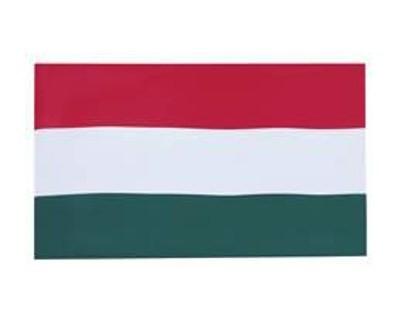Ungarn ohne Wappen Fahne 90 x 150 cm Nr. 198